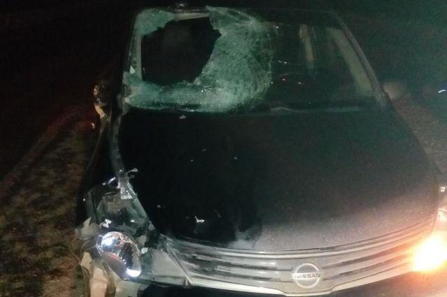 На 15-м километре дороги «Ижевск-Якшур-Бодья» водитель автомобиля Nissan, 42-летняя женщина, сбила  неустановленного пешехода - мужчину.