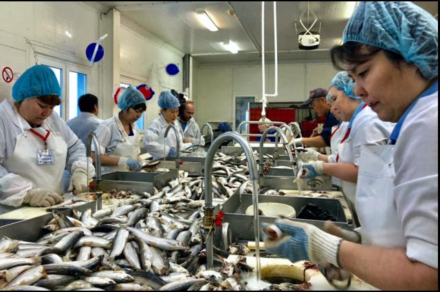 В Тазовском районе отмечают 90-летие рыбопромыслового участка