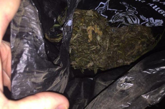 Полиция задержала ишимца, хранившего коноплю в стиральной машине