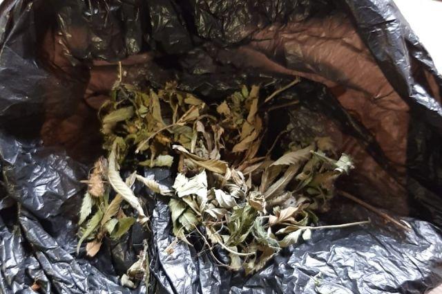 В Саракташе полицейские задержали наркомана