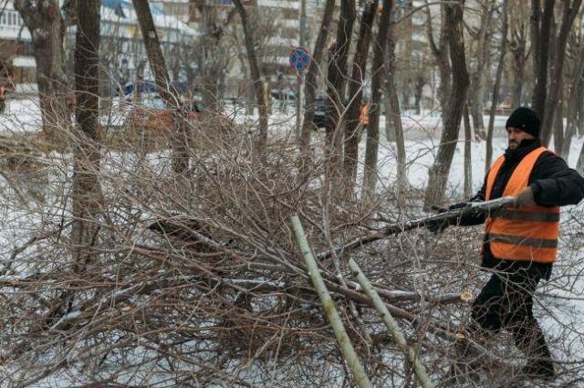 На улице 50 лет Октября проводят обрезку деревьев