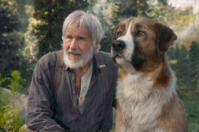 В 2020 году в прокат выйдет экранизация повести Джека Лондона «Зова предков»