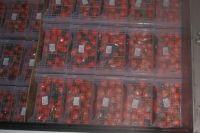 На границе Оренбургской области изъяли крупную партию мандаринов из Китая