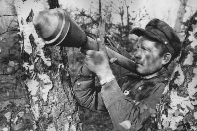В таких кадрах Владимир Голышев видит своего деда.