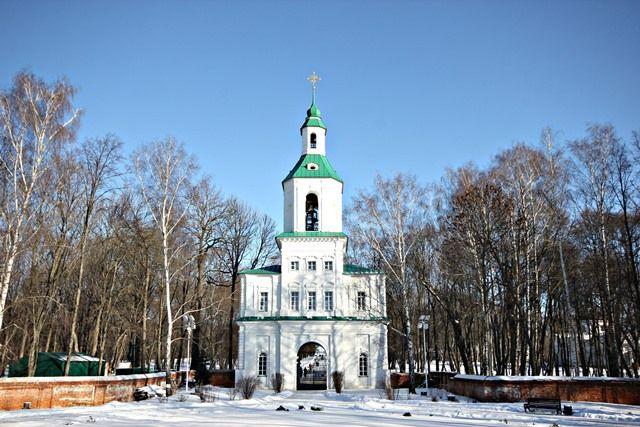 Богородицкий парк и дворец-музей. Зимние фото