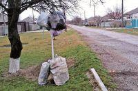 Жители Благодарного копят мусор дома и выставляют на улицу в мешках раз в неделю