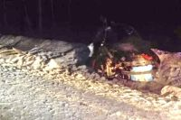 В аварии погибли двое взрослых, а также 3-летний мальчик и 6-летняя девочка.