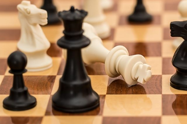 Обновленное здание городской шахматной школы приняло первенство города по шахматам среди команд общеобразовательных организаций «Белая Ладья».