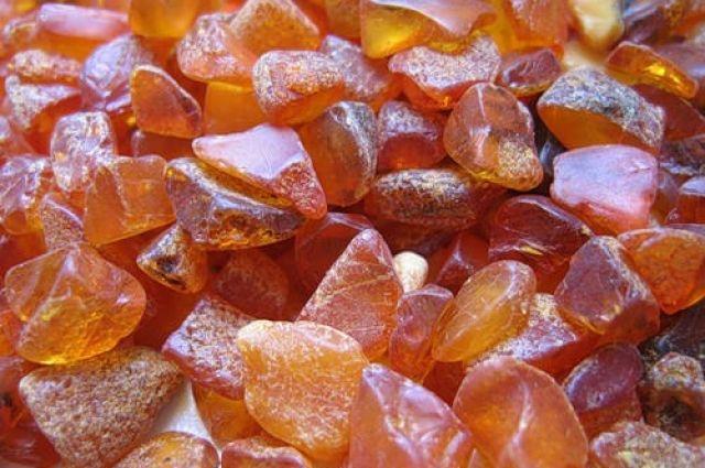 В Житомирской области продадут 200 янтарных участков: детали