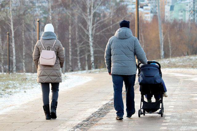 Родился первый ребенок какие выплаты положены в 2020