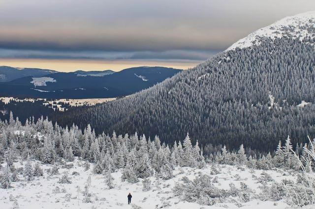 В ГСЧС предупредили о штормовом ветре и мокром снеге  в Карпатах