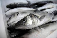 В 2019 году экспорт украинской рыбы увеличился на 25%