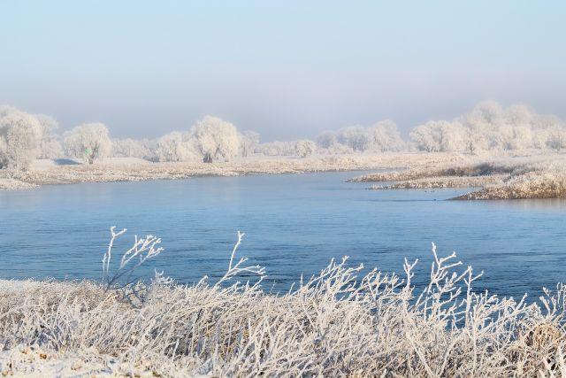 В Удмуртии спасли мальчика, упавшего в реку