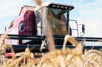 Правительство Оренбургской области продолжает разрабатывать методы по улучшению агропромышленного комплекса