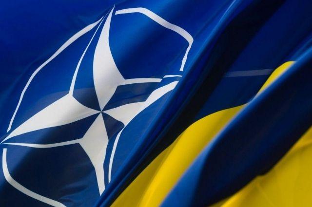 Украина выразила солидарность с позицией НАТО по Сирии