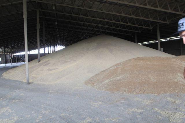 Главным резидентом парка станет завод по глубокой переработке зерна производственной мощностью 125 тысяч тонн в год.