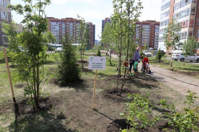 С 2017 года при грантовой поддержке компании было высажено более 11 000 деревьев в 17 городах России.