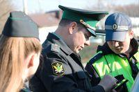 Самый популярный штраф в Петербурге - от ГИБДД.