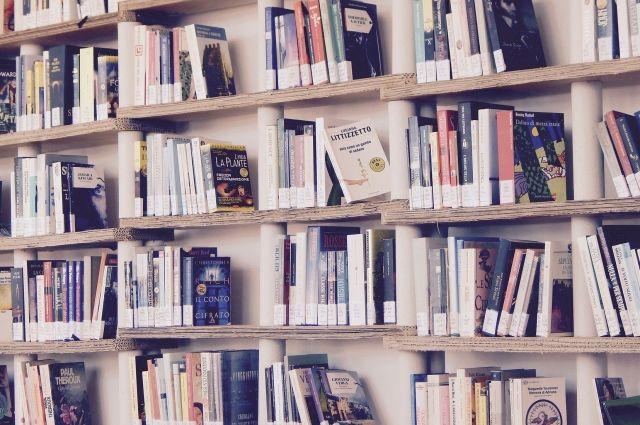 Встреча состоится в рамках литературного проекта «#ЛитМост».