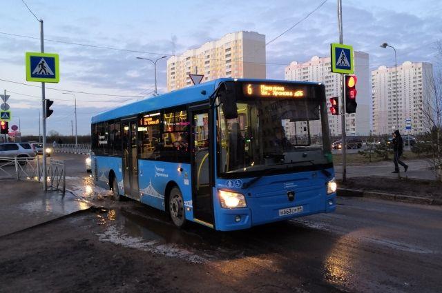 Новые автобусы постепенно вытесняют маршрутки.