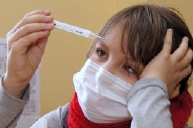 За последнюю неделю февраля в Новосибирской области к медикам с симптомами гриппа и ОРВИ обратились 22 973 человека.