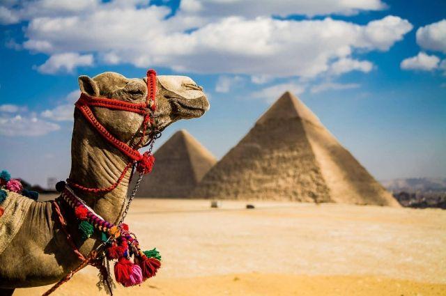 Египет вводит туристические визы: дата, что изменится для украинцев