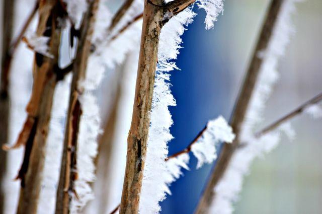 Столбики термометров в некоторых районах области опустятся сразу на 10 градусов.