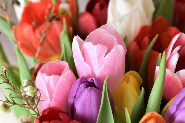 Женщин будут поздравлять 8 марта.