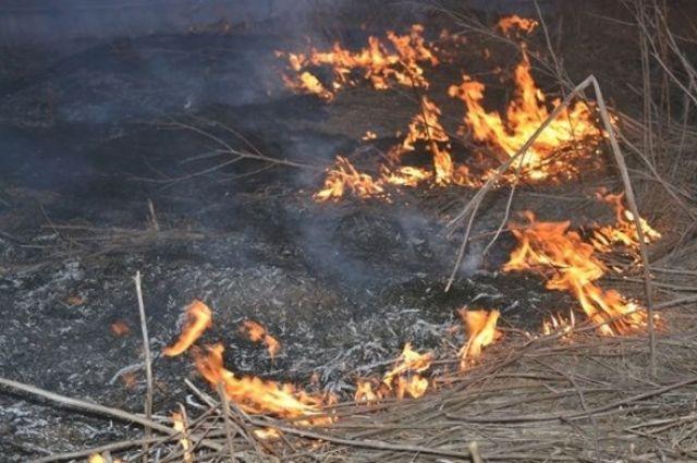 В Донецкой области обстрел позиций ВСУ спровоцировал масштабный пожар