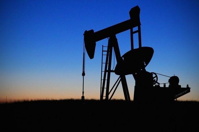 Цена нефти WTI выросла более чем на5%