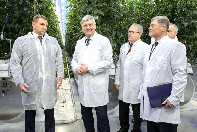 Губернатор осмотрел комплекс по производству плодоовощной продукции.