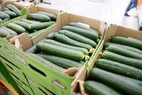 Уровень инфляции с начала года оценивается в 0,6%, продуктовой инфляции — 1,6%.