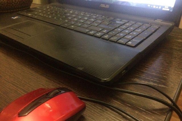 В Тюменской области увеличилось число IT-преступлений