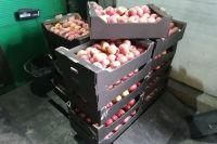 36 ящиков с яблоками сожгли.