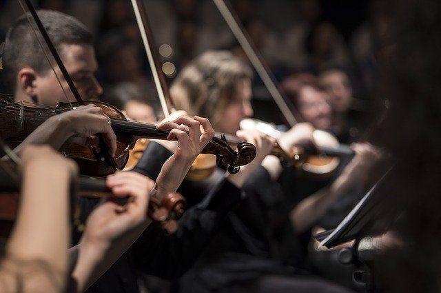 Из-за коронавируса в Удмуртию не привезут скрипку Моцарта