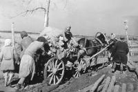 Война изменила в Кесовой Горе буквально всё. На фронт за полгода ушли 2530 жителей района. Все кесовогорцы, от мала до велика, работали с утра до ночи, помогая ковать победу в тылу.