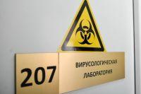 По данным минздрава, на коронавирус обследованы 1103 человека, под наблюдением находится 360 жителей края.
