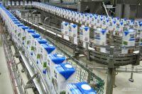 В прошлом году красноярские переработчики получили 228,5 тыс. тонн питьевого молока.