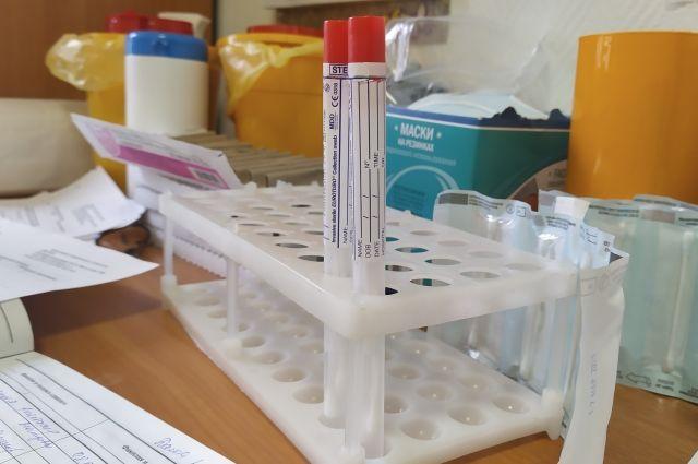 В столице тест на коронавирус прошли около 300 граждан