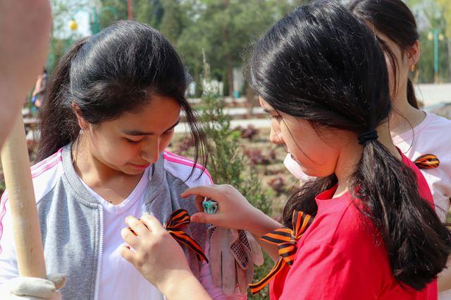 Сад памяти. В Таджикистане высадили деревья, посвященные павшим в ВОВ