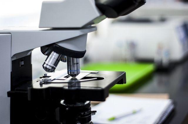 В Оренбуржье проведено свыше одной тысячи исследований на коронавирус COVID-19.