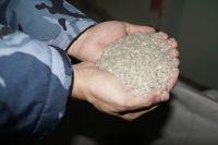 За два первых первых месяца переработано 11210 кг пластиковых отходов, произведено 10150 кг гранул для повторного производства.
