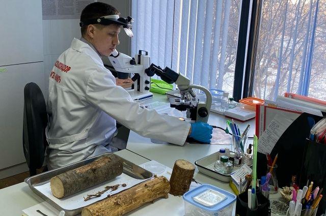 Сократить время проведения лабораторных исследований невозможно.