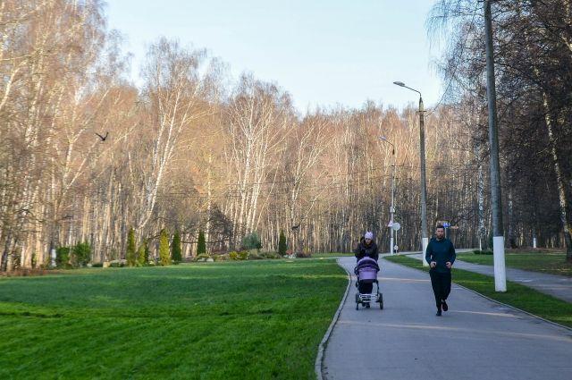 В парках Тулы отменены все мероприятия из-за коронавируса