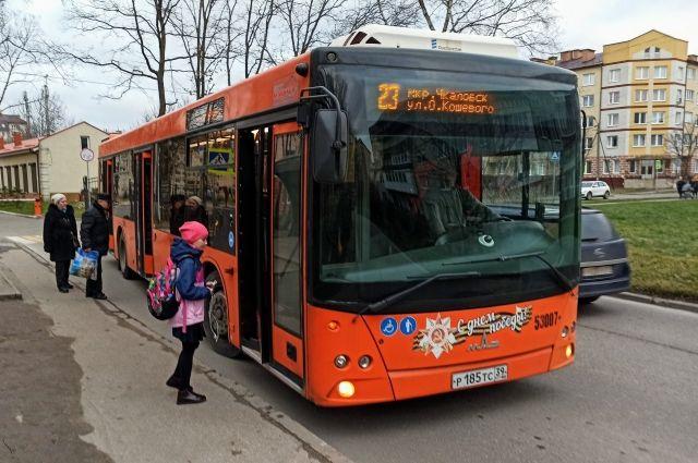 Городской транспорт Калининграда пять дней будет работать в режиме выходных