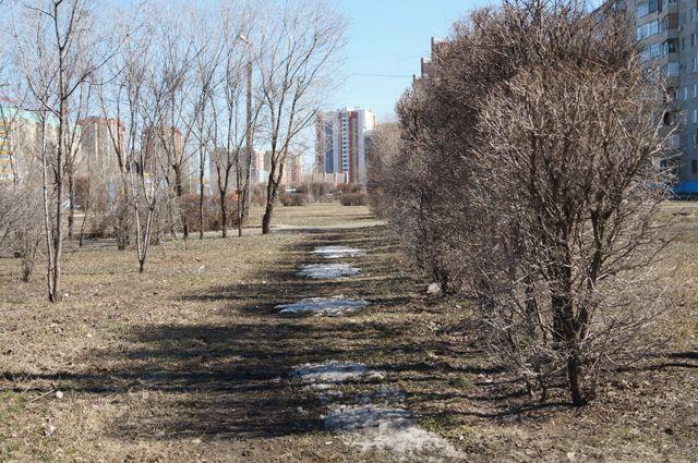 В Оренбуржье пришла теплая и солнечная весна.