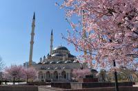 Символ Грозного - мечеть