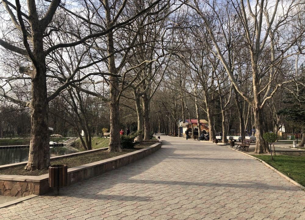 Аллея в парке им. Гагарина.