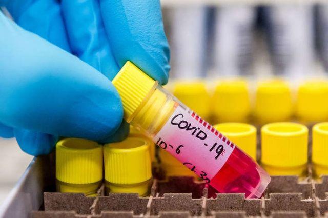 ВОЗ: число зараженных коронавирусом в мире скоро достигнет миллиона