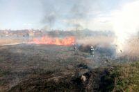 Пожар в Одесской области: горит национальный природный парк